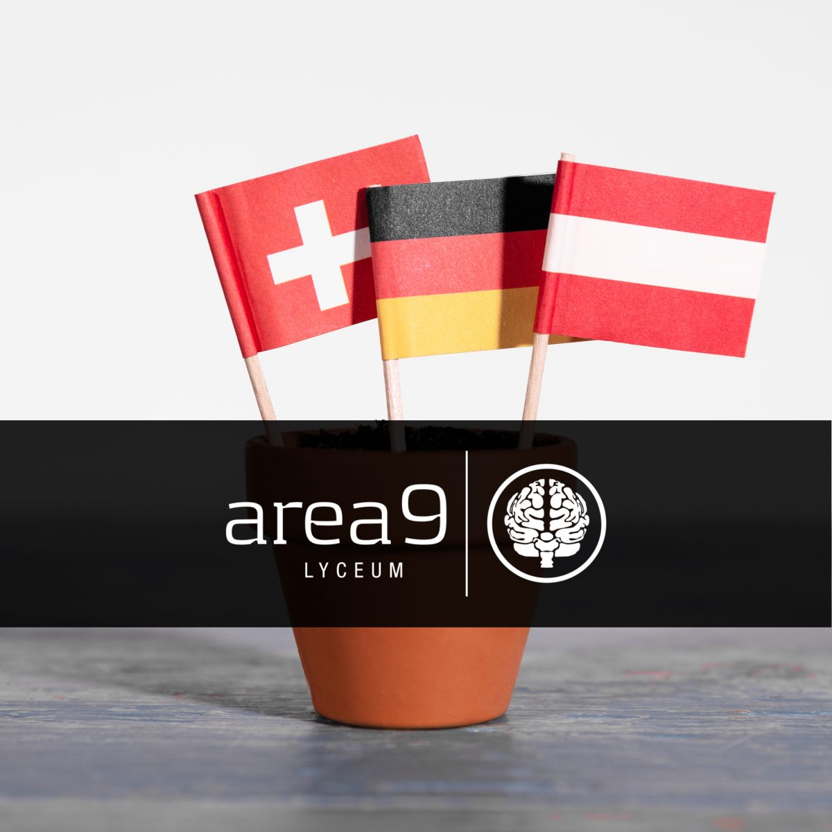 Area9 Lyceum Expands Area9 Rhapsode™ Platform – Germany, Austria and Switzerland